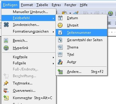 OpenOffice Nummerierung Feldbefehle