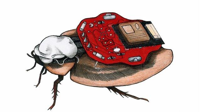 Kommerzieller Cyborg: Kakerlaken über das Smartphone steuern