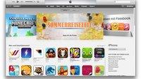 Der App Store, Fluch und Segen