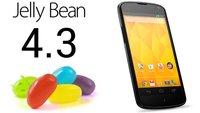 Android 4.3 bringt TRIM für alle Nexus-Geräte