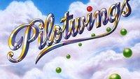 Nintendo: Pilotwings und weitere Downloads für Wii U und 3DS