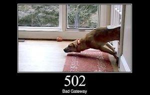 502 Bad Gateway - Bedeutung und Problemlösung