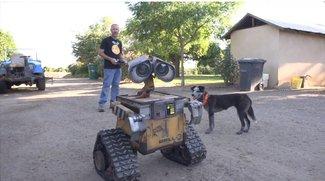 Wall-E in echt: Beeindruckender Nachbau mit allem Drum und Dran (Video)