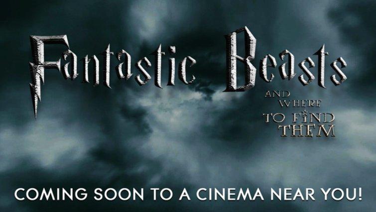 Harry Potter ist zurück: J.K. Rowling schreibt Film-Spin-off über Newt Scamander