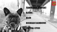 Berlin Festival 2013: Hymne zum Download, Playlists (Spotify, Juke), leider kein Livestream