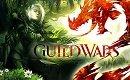 Guild Wars 2 Skills - Die Fertigkeiten