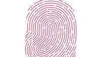 Touch ID: PayPal will Entwickler-Schnittstelle nutzen