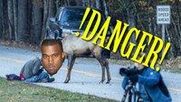 Fotograf wird von Wild angegriffen! Was würdest du tun?