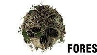 The Forest: Neuer Trailer zum Survival-Titel für Oculus Rift veröffentlicht