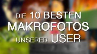 Die besten Makrofotos unserer User