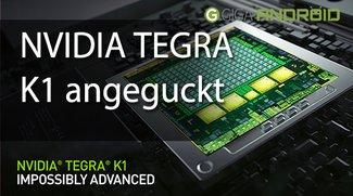 CES 2014: NVIDIA Tegar K1 Demo sieht grandios aus!