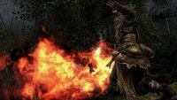Dark Souls 2: Zweiter DLC Crown of the Old Iron King veröffentlicht