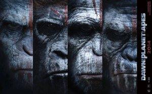 Planet der Affen: Revolution - Fakten & News