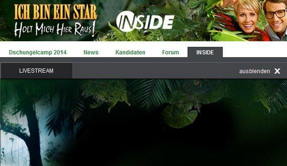 RTL-Dschungelcamp im Sommer 2015: Kandidaten der Show, Termin, Start