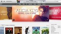 Musik-Downloads 2013 erstmals rückläufig: 5,7 Prozent weniger verkaufte Titel