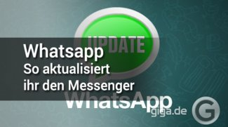 WhatsApp aktualisieren: So funktioniert es! (APK-Download)
