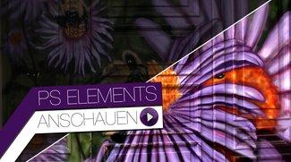 Photoshop Elements 12: Fotos verbessern durch Belichtungskorrektur