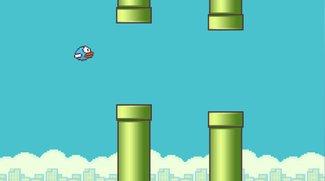 Flappy Bird: Entwickler spricht über Beweggründe fürs Entfernen