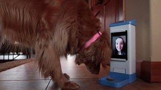 Kickstarter-Fundstück: iCPooch, die  Internet-Leckerli-Maschine für Hunde