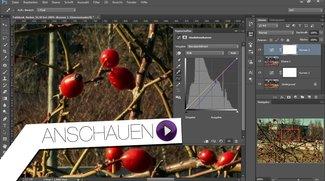 Photoshop Tutorial - Farblook eines anderen Bildes kopieren