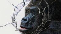 Gorilla-Glas-Produzent zieht über Saphirglas her