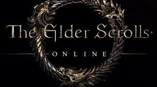 The Elder Scrolls Online Beta: Du erwartest zu viel! (Kolumne)