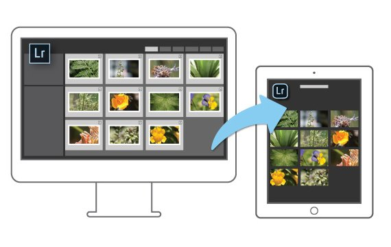 Adobe Lightroom auch fürs iPad erhältlich