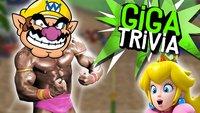 GIGA Trivia #44: Mario & Co. als Wrestle-Stars am Strand?