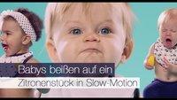 Babys beißen auf ein Zitronenstück in Slow-Motion