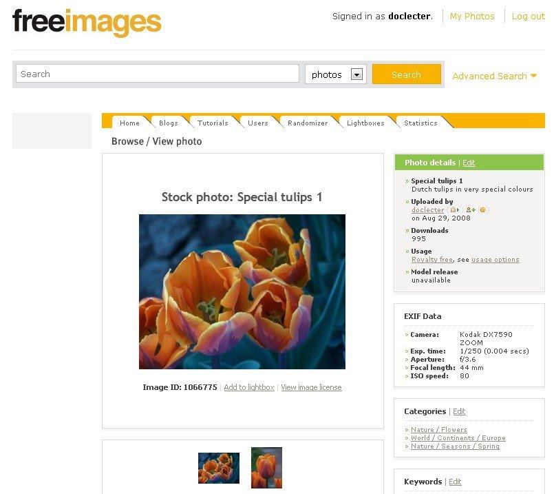 lizenzfreie bilder freeimages