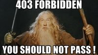 Was bedeutet 403 forbidden und was tut man dagegen?