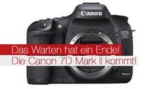 Das Warten hat ein Ende! Die Canon 7D Mark II kommt!