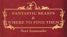 """""""Harry Potter""""-Spin-off kommt November 2016"""