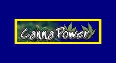 CannaPower.to: Musik und Hörbücher kostenlos downloaden - Ist das legal?