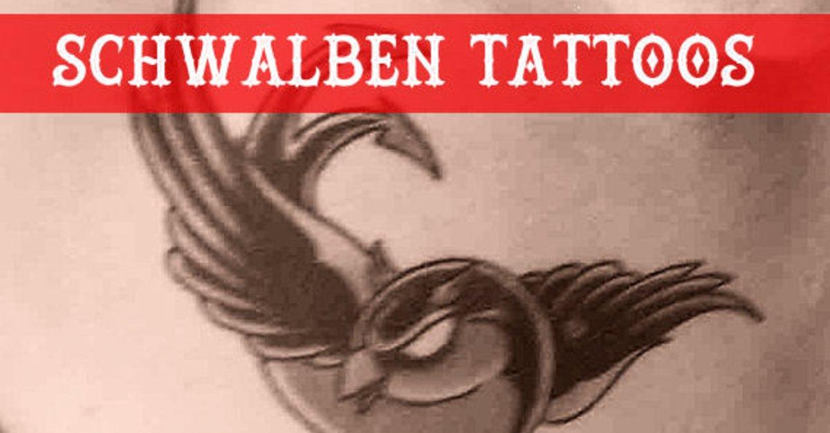 Wofür Steht Eigentlich Ein Schwalben Tattoo