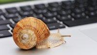 Internet langsam: So macht ihr euer Netz wieder flott