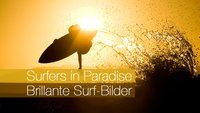 Surfers in Paradise