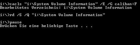 system-volume-information-loeschen-erfolg