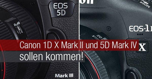 Canon 1D X Mark II und 5D Mark IV sollen kommen!
