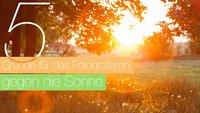 5 gute Gründe für das Fotografieren gegen die Sonne