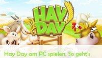 Hay Day für PC: So gibt's die Farm auf Windows