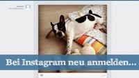 Bei Instagram neu anmelden: Schritt für Schritt
