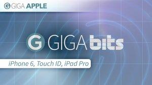 GIGA Bits #80085