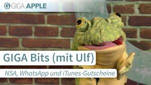 GIGA Bits: NSA, WhatsApp, iTunes-Gutscheine