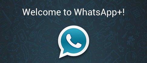 blauer haken whatsapp plus