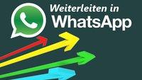 In WhatsApp weiterleiten und das Limit umgehen: Nachrichten, Bilder, Chats