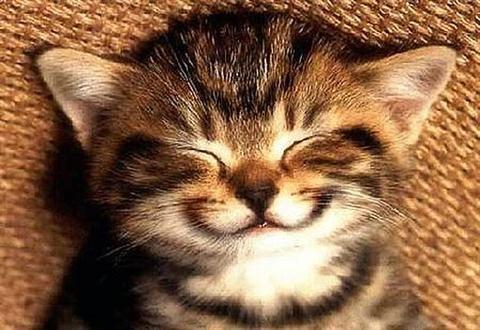 x3 smiley