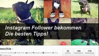 Instagram: Mehr Follower bekommen – so klappt's