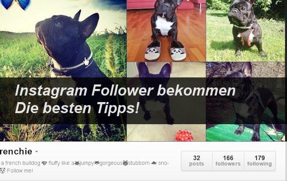 Mehr Instagram-Follower und -Likes bekommen - so geht's