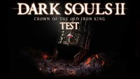 Dark Souls 2 - Crown of the Old Iron King Test: Gut, aber ohne Funken